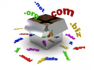 Seobaglyak és a domain